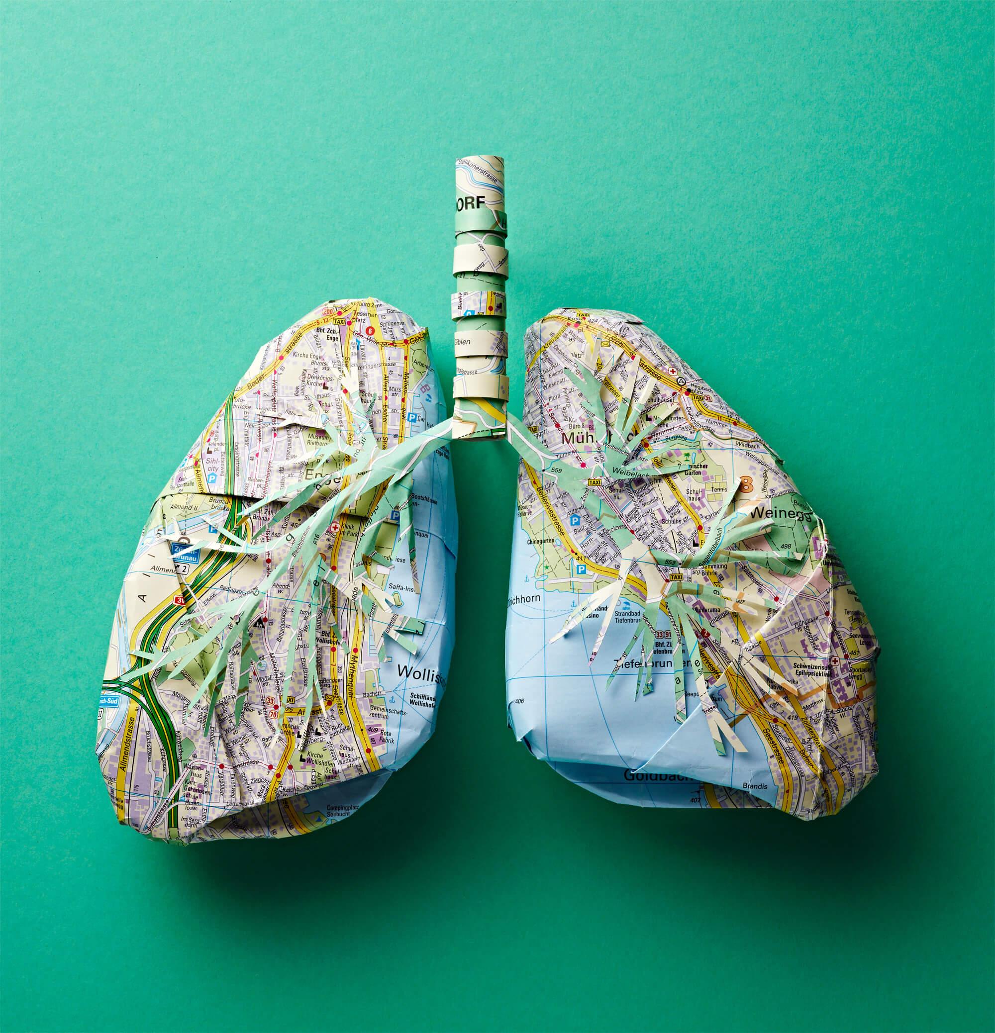 eth_lungs_paperart_katrinrodegast